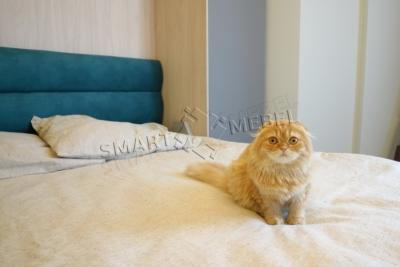 St.Pushkinskaya, 25v | Murphy Bed JUPITER
